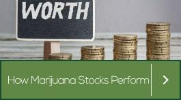 should you invest in marijuana stocks